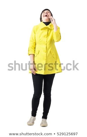 Laughing vivacious woman talking on a mobile Stock photo © dash