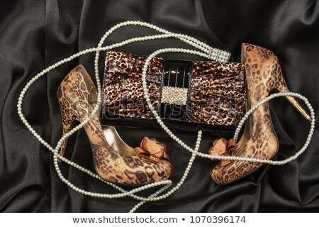 Leopard bag and shoes  lying on white  fabric stock photo © alekleks