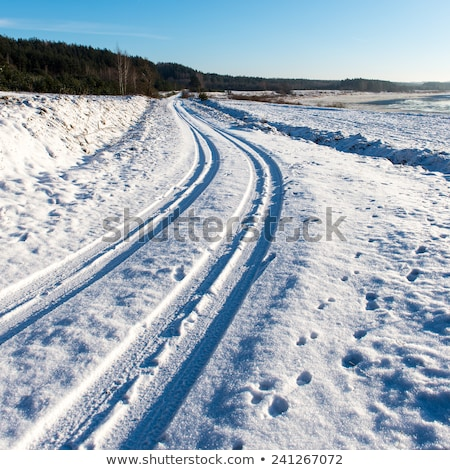 mark of tire on snow field in winter stock photo © meinzahn