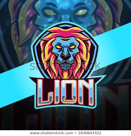 Lion Cartoon Character stock photo © ridjam