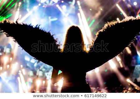Fine art photo of a woman-angel Stock photo © konradbak