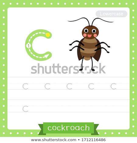 Letra c cucaracha ilustración fondo arte educación Foto stock © bluering