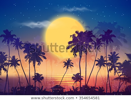 Ocean scene with fullmoon at night Stock photo © bluering