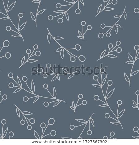vintage bilberry seamless pattern stock photo © conceptcafe