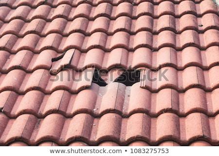 closeup of vintage tile roof stock photo © klinker