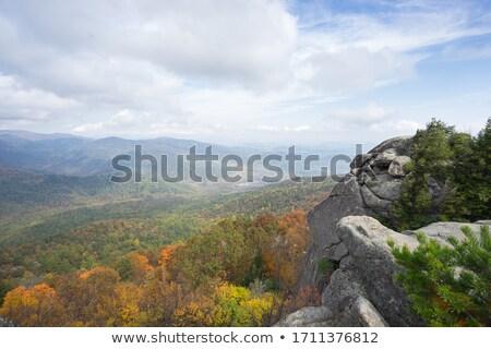 Velho trapo Virgínia cair ver linha do horizonte Foto stock © backyardproductions