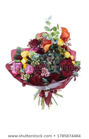 coloré · Lily · fleurs · isolé · blanche · fleur - photo stock © karandaev