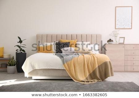 Gezellig slaapkamer interieur verdubbelen bed lichtblauw Stockfoto © manera