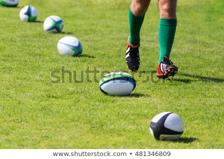 Player with leg on rugby ball Stock photo © wavebreak_media