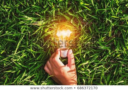 グリーンエネルギー · 草 · 電球 · 3D · 3dのレンダリング · 孤立した - ストックフォト © make
