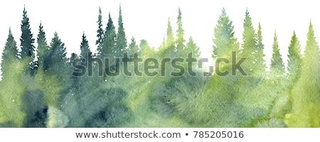 支店 · 落葉性の · ツリー · 水彩画 · 実例 · 白 - ストックフォト © jara3000