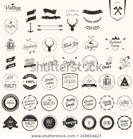 Trendy label stamp Stock photo © IMaster