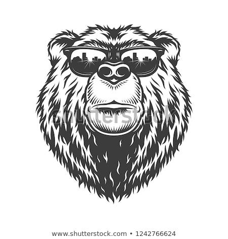black and white bear logo vector illustration. Stock photo © Vicasso