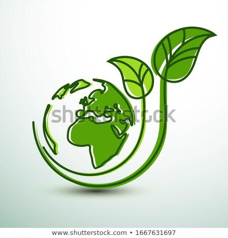 Green earth concept icon Stock photo © milsiart
