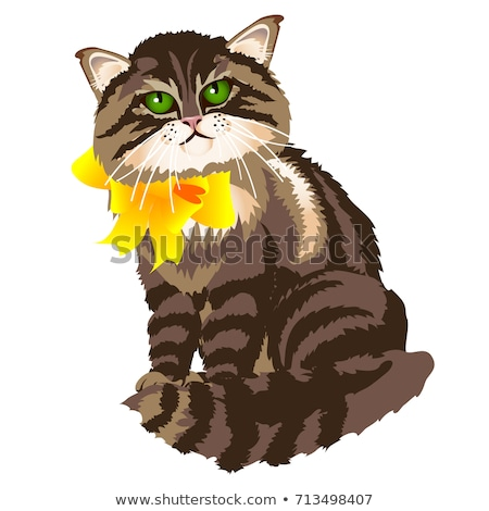 Cute fluffy tabby cat with yellow ribbon bow isolated on a white background. Vector cartoon close-up stock photo © Lady-Luck