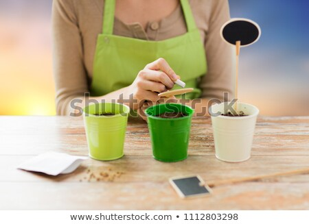 close up of woman writing on garden nameplate Stock photo © dolgachov