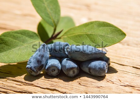 Delicious and healthy honeyberry (lonicera) Stock photo © brebca