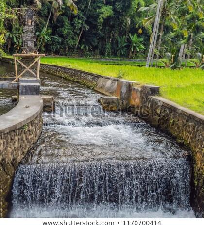 River in Balinese style in the park Stock photo © galitskaya
