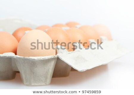 ten chicken eggs in cardboard container stock photo © marylooo