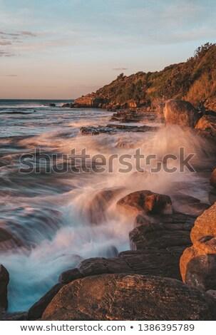 morning sunlight on wombarra illawarra coastline stock photo © lovleah