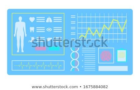 Teljes diagnózis test laboratórium tech vektor Stock fotó © robuart