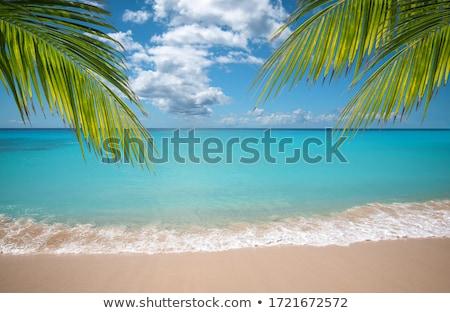 Beautiful beach and sea Stock photo © dmitry_rukhlenko