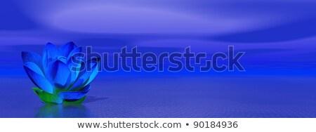 Lily flower in blue indigo ocean Stock photo © Elenarts