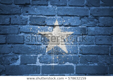 Banderą Somali murem malowany grunge tekstury Zdjęcia stock © creisinger