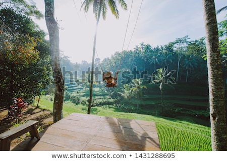 girl swinging over river Stock photo © clearviewstock