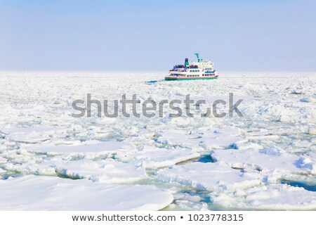 Ice Drifting Stock photo © SRNR
