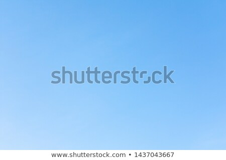 beauty summer day abstract environmental backgrounds for your d stock photo © tolokonov