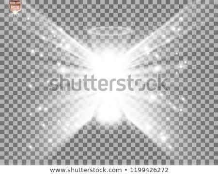 Garçon ailes d'ange longtemps blond cheveux isolé Photo stock © courtyardpix