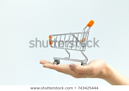 Shopping Cart on Hand Stock photo © Discovod