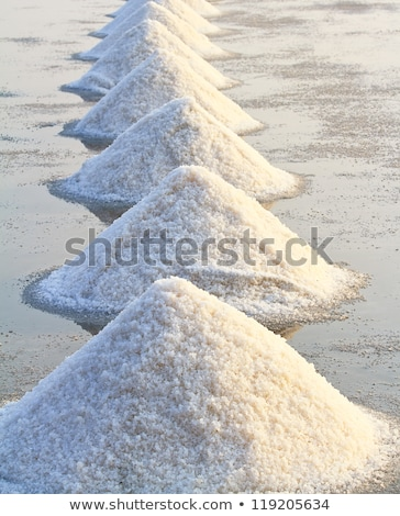 Evaporation ponds of salt farm, Portugal Stock photo © dinozzaver