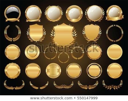 embléma · arany · terv · háttér · korona · klasszikus - stock fotó © coroichi