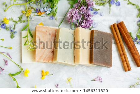 Luxueus handgemaakt kaneel zeep geïsoleerd witte Stockfoto © natika