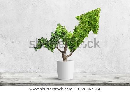 緑 · 矢印 · 壁 - ストックフォト © stevanovicigor