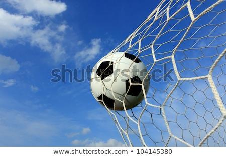 soccer · ball · obiettivo · erba · sport · calcio · campo - foto d'archivio © hin255