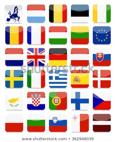 Cuadrados icono bandera Estonia metal marco Foto stock © MikhailMishchenko