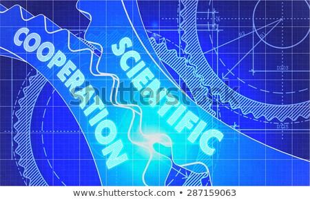 Scientific Cooperation on the Cogwheels. Blueprint Style. Stock photo © tashatuvango