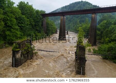 railway through a village in carpathians stock photo © oleksandro