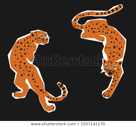 The two cheetahs Stock photo © master1305