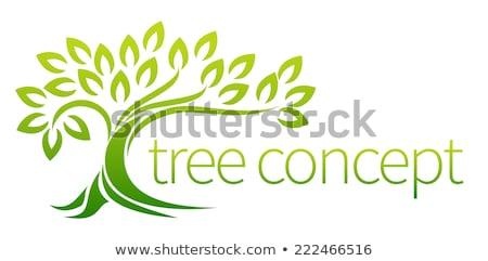 eco · ağaç · yaprak · logo · şablon · yalıtılmış - stok fotoğraf © voysla
