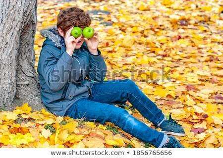 мальчика · дерево · древесины · лес · ребенка · молодежи - Сток-фото © paha_l