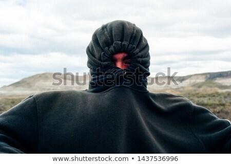 Gizleme ceket sevimli esmer gülümseme kız Stok fotoğraf © dnsphotography