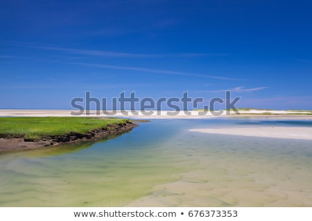 Bass Hole Boardwalk, Yarmouth, Maine,USA Stock photo © CaptureLight