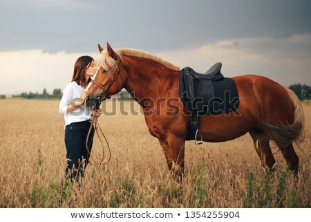 happy beautiful young woman with horse standing outdoors stock photo © deandrobot