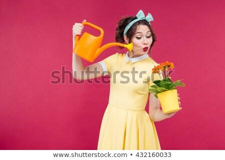 ストックフォト: ピンナップ · 少女 · じょうろ · 美しい · ファッション · 若い女性