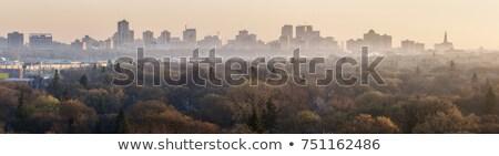Winnipeg panorama at sunrise  Stock photo © benkrut