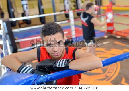 bewusteloos · bokser · arbiter · ring · mannelijke · boksen - stockfoto © wavebreak_media